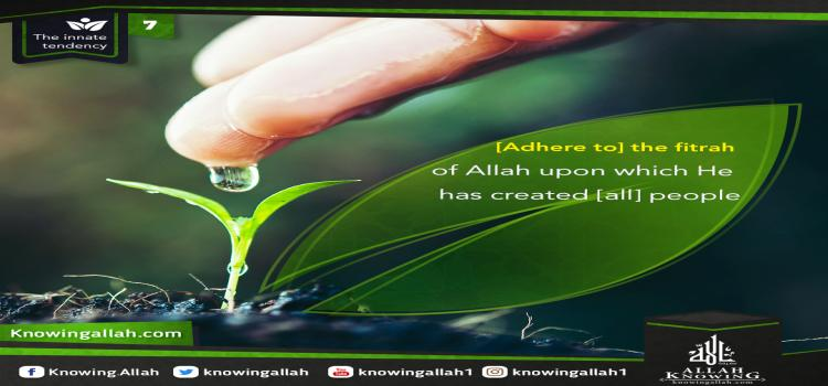 [Adhere to] the fitrah of Allah upon which He has created [all] people