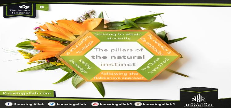 The pillars of the natural instinct