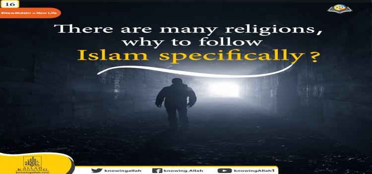 why to follow Islam in particular